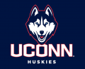 UConn Huskies 2013-Pres Alternate Logo iron on sticker