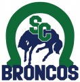 Swift Current Broncos 2014 15-Pres Primary Logo iron on sticker