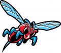 Delaware State Hornets 2004-Pres Misc Logo 02 decal sticker