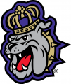 James Madison Dukes 2013-2016 Alternate Logo 01 iron on sticker