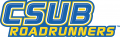 CSU Bakersfield Roadrunners 2006-Pres Wordmark Logo 04 iron on sticker