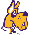 Albany Great Danes 2001-2007 Alternate Logo 02 decal sticker