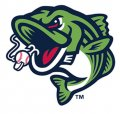 Gwinnett Stripers 2018-Pres Alternate Logo iron on sticker
