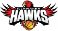 Illawarra Hawks 2015 16-Pres Primary Logo decal sticker