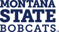 Montana State Bobcats 2013-Pres Wordmark Logo 01 iron on sticker