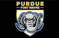 Purdue Fort Wayne Mastodons 2018-Pres Primary Dark Logo 01 iron on sticker