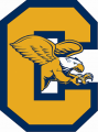 Canisius Golden Griffins 2006-Pres Alternate Logo iron on sticker