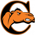 Campbell Fighting Camels 2008-Pres Alternate Logo 02 iron on sticker