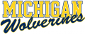 Michigan Wolverines 1996-Pres Wordmark Logo 07 decal sticker
