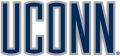UConn Huskies 1996-2012 Wordmark Logo 04 iron on sticker