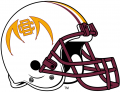 Bethune-Cookman Wildcats 2010-2015 Helmet Logo decal sticker