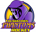 Youngstown Phantoms 2014 15-Pres Primary Logo iron on sticker