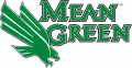 North Texas Mean Green 2005-Pres Alternate Logo 02 iron on sticker