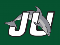 Jacksonville Dolphins 1996-2018 Alternate Logo decal sticker