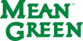 North Texas Mean Green 2005-Pres Wordmark Logo 02 iron on sticker