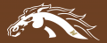Western Michigan Broncos 2016-Pres Misc Logo decal sticker