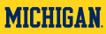 Michigan Wolverines 1996-Pres Wordmark Logo 01 decal sticker