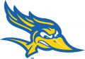 CSU Bakersfield Roadrunners 2006-Pres Alternate Logo 03 iron on sticker