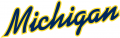 Michigan Wolverines 1996-Pres Wordmark Logo 10 decal sticker