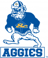 North Carolina A&T Aggies 1988-2005 Alternate Logo 02 iron on sticker
