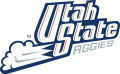 Utah State Aggies 1996-2011 Wordmark Logo 01 iron on sticker