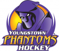 Youngstown Phantoms 2012 13-2013 14 Primary Logo iron on sticker