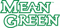 North Texas Mean Green 2005-Pres Wordmark Logo 03 iron on sticker