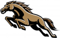 Western Michigan Broncos 1998-2015 Alternate Logo decal sticker