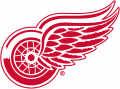 Detroit Red Wings 1948 49-Pres Primary Logo iron on sticker