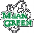 North Texas Mean Green 2005-Pres Alternate Logo 04 iron on sticker