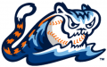 West Michigan Whitecaps 2013-Pres Alternate Logo decal sticker