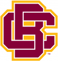 Bethune-Cookman Wildcats 2016-Pres Primary Logo decal sticker
