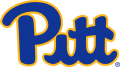 Pittsburgh Panthers 2019-Pres Primary Logo iron on sticker