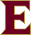 Elon Phoenix 2016-Pres Alternate Logo 01 iron on sticker