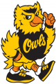 Kennesaw State Owls 1992-2011 Mascot Logo decal sticker