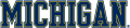 Michigan Wolverines 1996-Pres Wordmark Logo 04 decal sticker