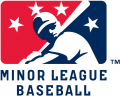 Minor League Baseball 2008-Pres Primary Logo decal sticker