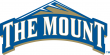 Mount St. Marys Mountaineers