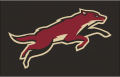 Arizona Coyotes 2008 09-2013 14 Jersey Logo decal sticker