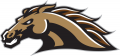 Western Michigan Broncos 1998-2015 Secondary Logo 01 decal sticker