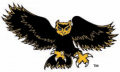 Kennesaw State Owls 1992-2011 Alternate Logo 02 decal sticker