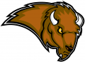 Lipscomb Bisons 2002-2011 Secondary Logo decal sticker