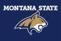 Montana State Bobcats 2013-Pres Alternate Logo 07 iron on sticker