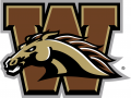 Western Michigan Broncos 2016-Pres Primary Logo decal sticker
