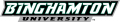 Binghamton Bearcats 2001-Pres Wordmark Logo 04 decal sticker