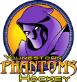 Youngstown Phantoms 2003 04-2011 12 Primary Logo iron on sticker