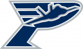 Pensacola Ice Flyers 2013 14-Pres Secondary Logo iron on sticker