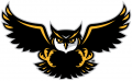 Kennesaw State Owls 2012-Pres Alternate Logo 01 decal sticker