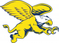 Canisius Golden Griffins 1999-2005 Secondary Logo 02 iron on sticker