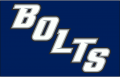 Tampa Bay Lightning 2008 09-2013 14 Jersey Logo iron on sticker